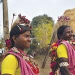 Baiga tribe, Madhya Pradesh